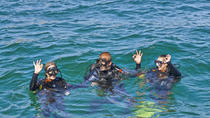 Discover Scuba Diving in Albufeira, Albufeira, Scuba Diving