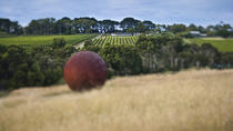 Estate to Plate: Montalto Vineyard Gourmet Lunch and Wine-Tasting Tour, Melbourne, Dining ...