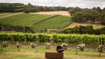 Mornington Peninsula Discovery Wine Tasting and Lunch, Melbourne, Wine Tasting & Winery Tours