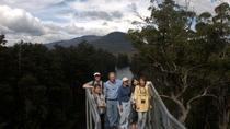 Tahune Airwalk Active Day Trip from Hobart Including Hastings Caves, ホバート