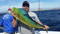 Artisan Half Day Ocean Fishing Private from San Jose, San Jose, Private Sightseeing Tours
