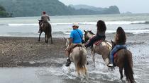 Beach & Rainforest Horseback Riding with Crocodile Boat Tour Shore Excursion, San Jose, Horseback...