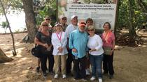 Cahuita National Park and banana plantation Shore Excursion, Limon, Half-day Tours