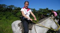 Horseback Riding Adventure at Turubari Eco Park and Rainforest Aerial Tram, Puntarenas