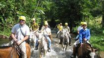 Horseback Riding Adventure at Turubari Eco Park and Rainforest Aerial Tram, Puntarenas, Day Trips