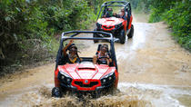 Jungle & Rivers BUGGY Exploration with Crocodile Safari Boat Tour, San Jose, Ports of Call Tours