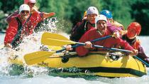 Pacuare River Whitewater Rafting with Picnic lunch Shore Excursion, Limon, Ports of Call Tours