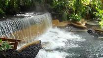 Private Tour to the Arenal Volcano and Tabacon Hot Springs, San Jose, Day Trips