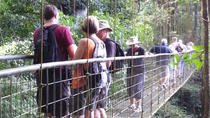 Rainforest Skywalk and Tarcoles River Eco Cruise Tour, Puntarenas