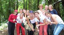 Rainforest Skywalk and Tarcoles River Eco Cruise Tour, Puntarenas, Ports of Call Tours