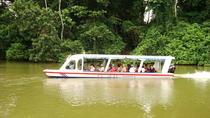 Shore Excursion: Tortuguero Canal Eco Cruise and Banana Plantation, Limon, Ports of Call Tours