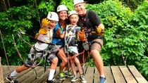 Zipline and Rain Forest Aerial Tram Tour from Puntarenas, Puntarenas, Ports of Call Tours