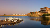 Experience Short Trip Jaipur - Jodhpur 02 Nights - 03 Days With Transportation, Jaipur, Multi-day...