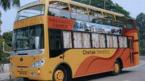 Full-Day Udaipur Sightseeing By Double Decker Bus, Udaipur, Cultural Tours