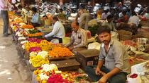 Morning Visit to Flower Market with Tiger Fort and Monkey Temple Transfers, New Delhi, Walking Tours