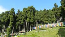 Private Day Excursion Trip To Takdah, Tinchuley and Lamahatta From Darjeeling, Darjeeling, Private ...