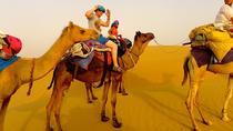 Private Excursion: Full Day Safari Route Jaisalmer - Camel-safari - Jaisalmer, Jaisalmer, Airport &...