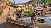 Private Jaipur Sightseeing Excursion with Monkey Temple (Galta Ji) & Amber Fort, Jaipur, Private ...