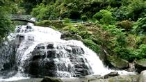 Private Short Trip To Tiger Hill & Rock Garden & Gangamaya park From Darjeeling, Darjeeling, ...