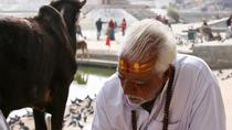 Special Village Trip Exploring Agriculture Fields Meeting Peoples From Udaipur, Udaipur, Cultural...