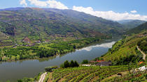 Full-Day Tour: Douro Valley Trip from Porto, Porto, Wine Tasting & Winery Tours