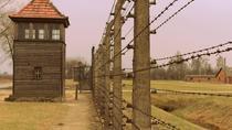 Auschwitz 1 Day Tour from Lodz, Warsaw, Day Trips