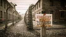 Krakow and Auschwitz 1 Day Tour from Lodz, Warsaw, Walking Tours