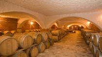 Peljesac Wine Private Day Trip from Dubrovnik, Dubrovnik, Wine Tasting & Winery Tours