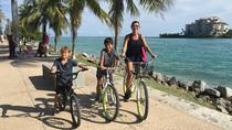 South Beach Bicycle Rental, Miami, Pedicab Tours