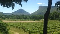 Recorrido vinícola a Pic St Loup con un almuerzo casero desde Montpellier, Montpellier, Wine Tasting & Winery Tours
