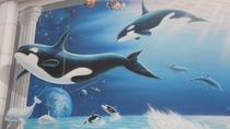 Beijing Zoo, Aquarium, and Museum of Natural History Private Tour, Beijing, Kid Friendly Tours & ...