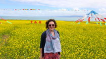 Qinghai Lake Day Tour, Xining, Day Trips