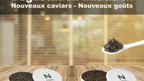Sturgeon Fish-Farm Visit and Caviar Initiation Tasting in Neuvic, Limousin, Half-day Tours