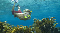 Nassau Shore Excursion: Bahamas Snorkel Adventure, Nassau, Ports of Call Tours