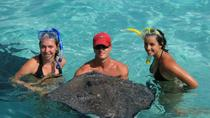 Cayman Islands Breakfast and Snorkel Cruise to Stingray City, Cayman Islands, Half-day Tours