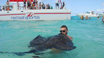 Stingray Sandbar and Rum Point Beach Adventure, Cayman Islands, Day Cruises