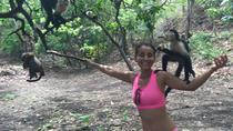 Monkey Tour Adventure, Jaco, 4WD, ATV & Off-Road Tours