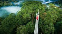 Monteverde Cloud Forest, Jaco, 4WD, ATV & Off-Road Tours