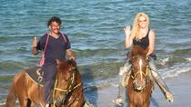 Beach Horseback Riding in Puerto Plata, Puerto Plata, Horseback Riding