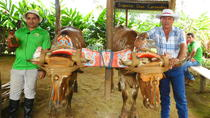 Cultural Farm Tour in Arenal, La Fortuna, Cultural Tours