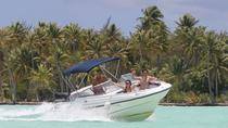 Private Bora Bora Lagoon Cruse with Optional BBQ Picnic Lunch on a Motu, Bora Bora, Day Cruises