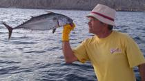 Tour privado: pesca deportiva en Cabo San Lucas, Los Cabos, Fishing Charters & Tours