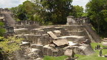 Day Trip to Tikal from Guatemala City, Guatemala City, Day Trips