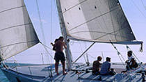 Day Sailing on Banderas Bay