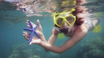 Marietas Islands: Cavern Swim and Snorkel Cruise from Puerto Vallarta, プエルトバラータ