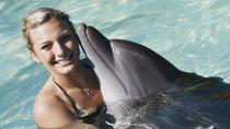 Nuevo Vallarta Dolphin Swim Experience, Puerto Vallarta, Swim with Dolphins