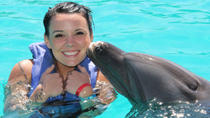 Nuevo Vallarta Signature Dolphin Swim, Puerto Vallarta, Swim with Dolphins