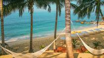 Puerto Vallarta Combo Tour: Horseback Riding and Beach Break, Puerto Vallarta, Ziplines