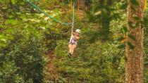 Puerto Vallarta Combo Tour: UTV, Rappelling, and Zipline Canopy Tour, Puerto Vallarta, Ziplines