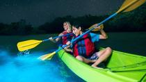 Cocoa Beach Night Time Bioluminescence Kayak Tour, Cocoa Beach, Kayaking & Canoeing